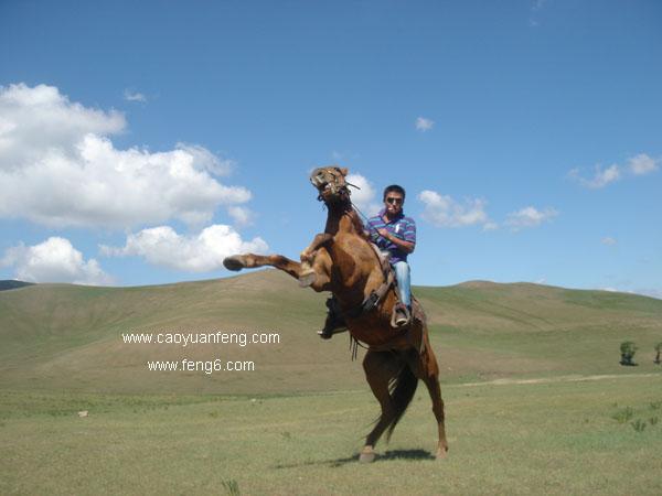 骑马耍酷 不一样的骑马方式 来试试吧
