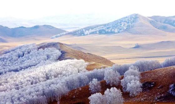 坝上冬天美景