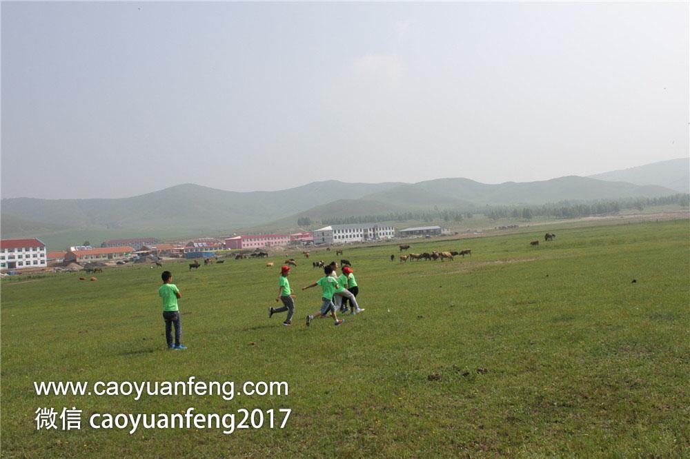 郑州城市宝贝精英少年 草原夏令营