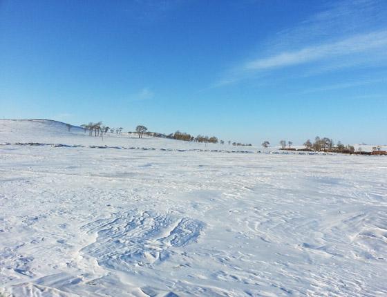 丰宁坝上草原雪景篇