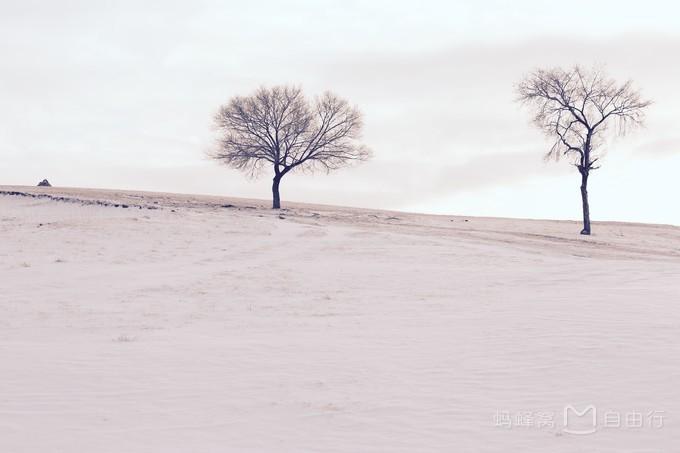 冬季坝上摄影之旅(附坝上冬季摄影教程及美图示范)