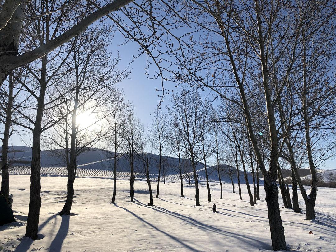 坝上冬季野外雪地扎营