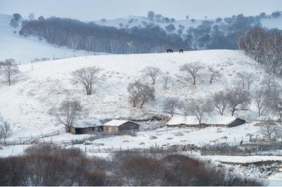 冬季坝上摄影美景