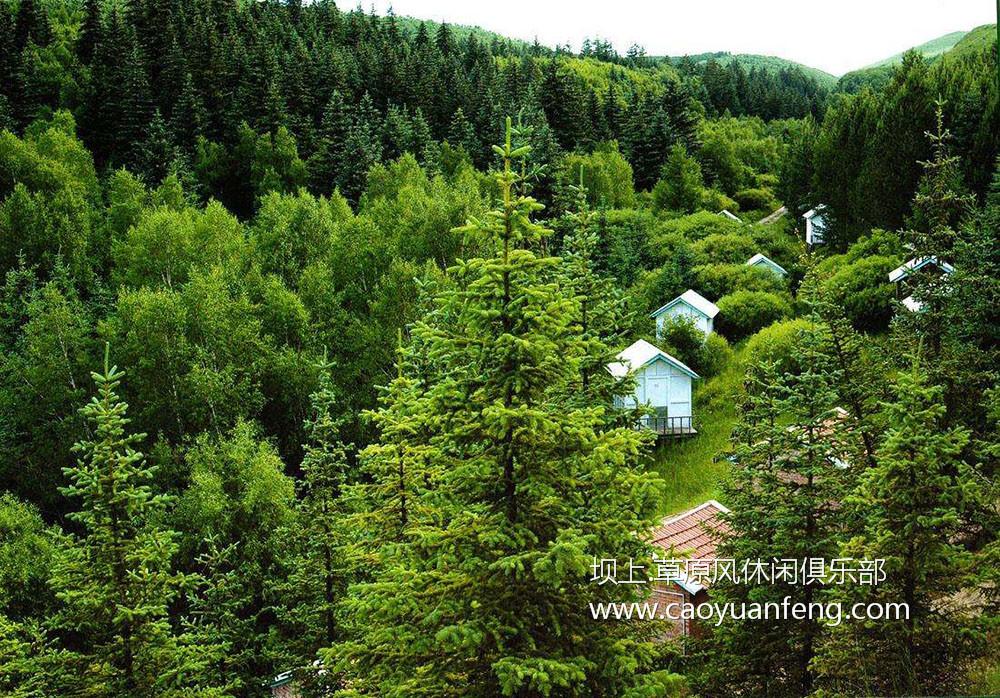 千松坝森林公园
