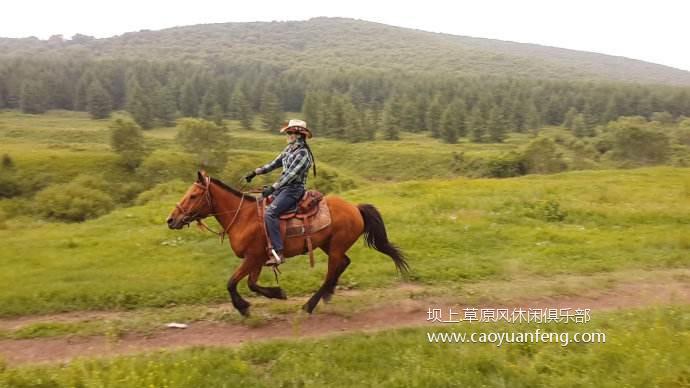 坝上草原骑马