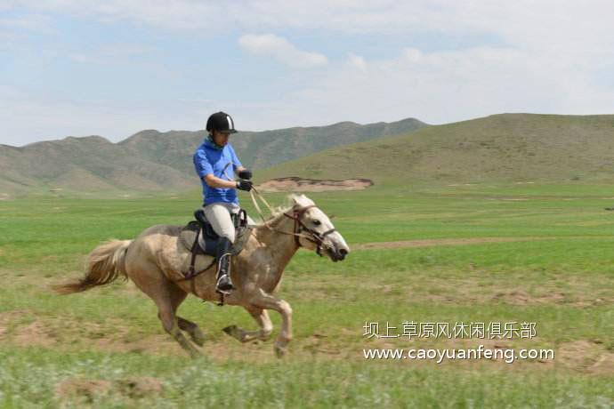 【独家】坝上草原骑马注意事项 骑手精心总结