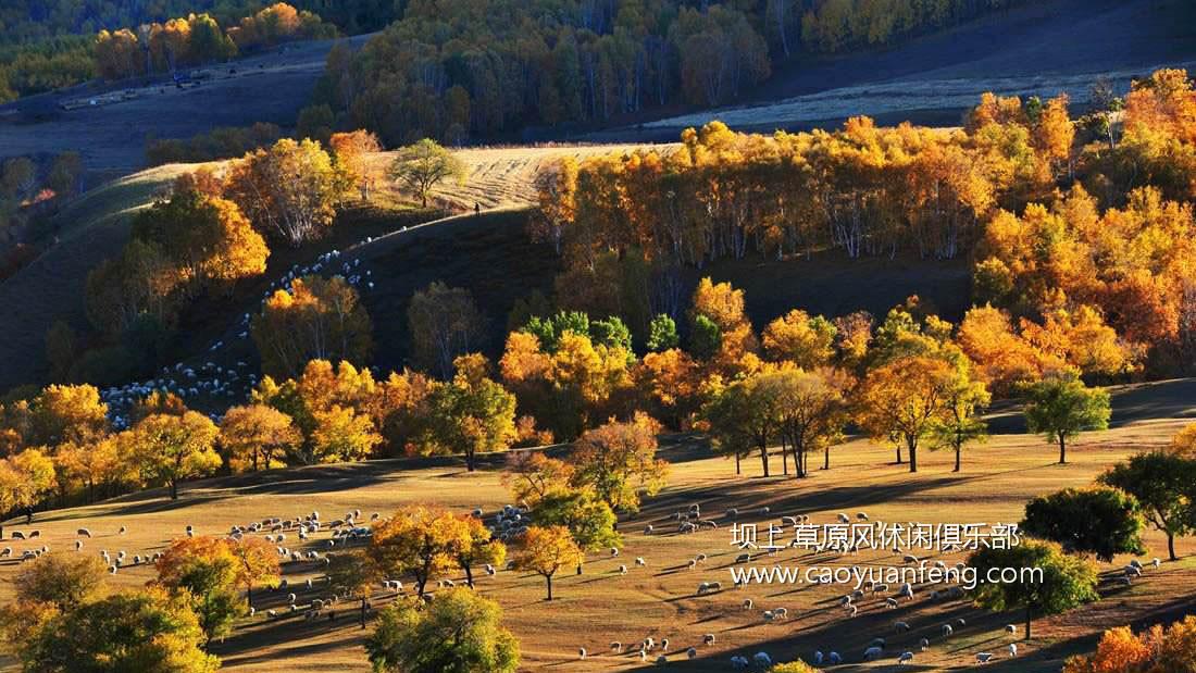 坝上风光美景之秋季摄影