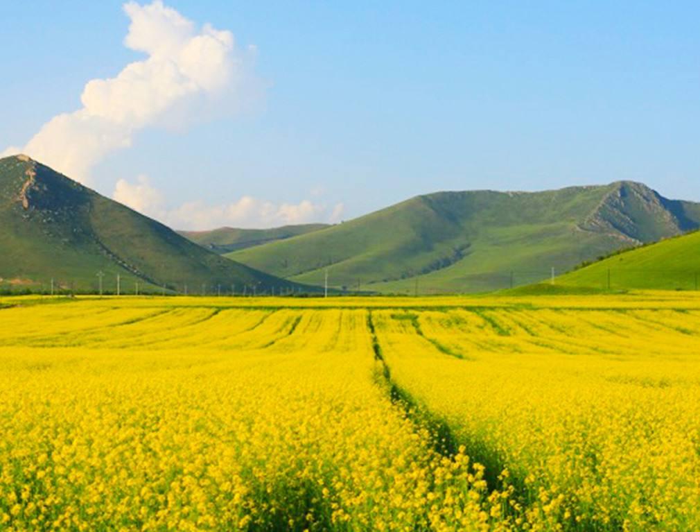 神仙谷七彩森林风景
