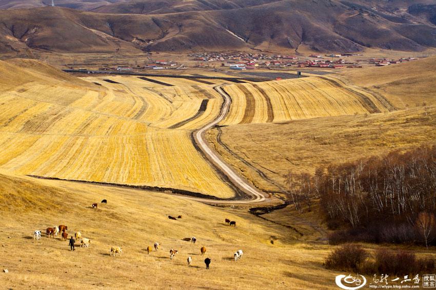 丰宁坝上草原初冬美景