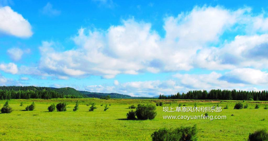 坝上四季风光美景之夏季摄影(暑期)