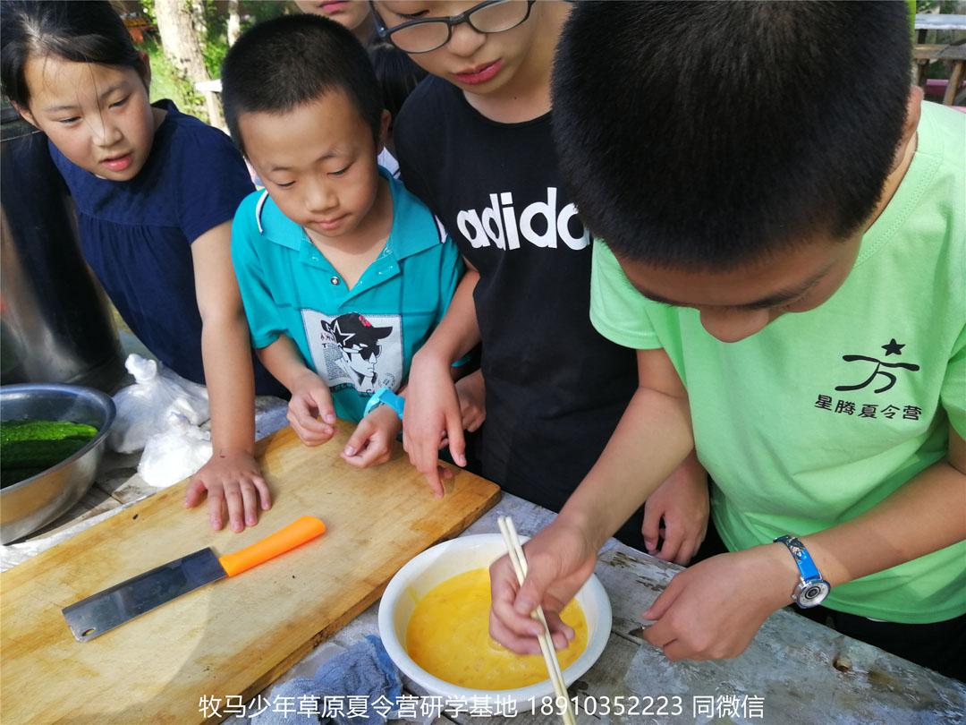 北京星腾少年坝上草原研学夏令营