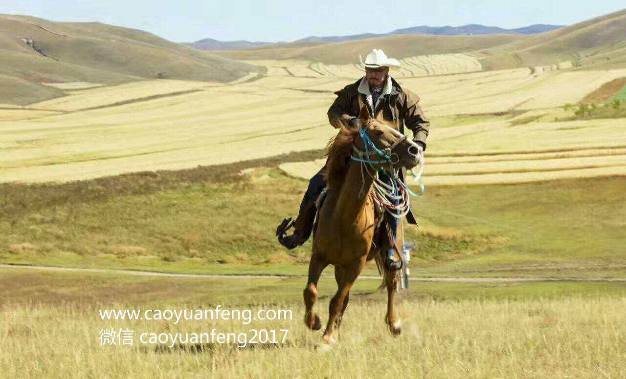友情岁月 丰宁坝上 多伦 锡林浩特四天骑马穿越活动