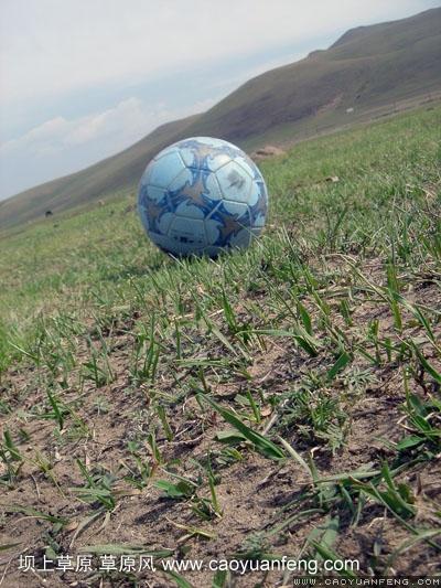 草原风免费提供足球、篮球 绿茵场挥洒你的汗水